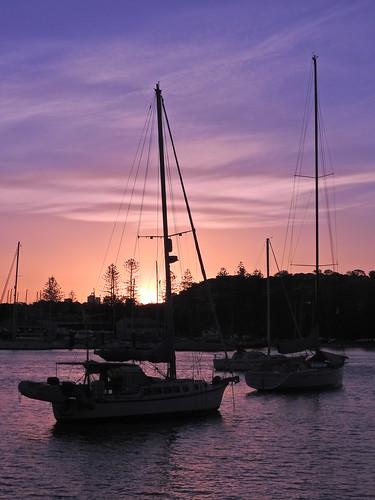 yachts sunset sydney harbour dusk