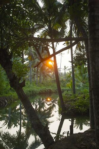kerala india munroe island paradise coconut palm sun sunset lowlight reflect reflections water canal waterway evening sundown munrothuruthu