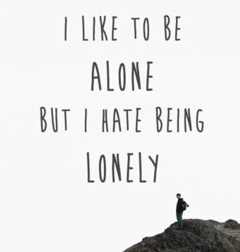 Life Quotes : I like to beeline but I hate being lonely ...