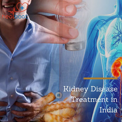 Kidney Transplantation Hospitals in India | by Anshi23