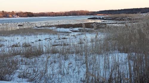 artblackburn marsh reeds ocean buzzardsbay weweantic massachusetts wareham snow ice sunset