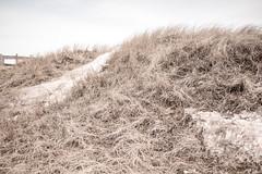 Winter Dune, Park Point Beach, Duluth 3/19/18