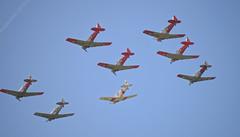 T-6 Harvards formation