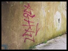 Torquay Seafront - Rock Walk Graffiti (51)