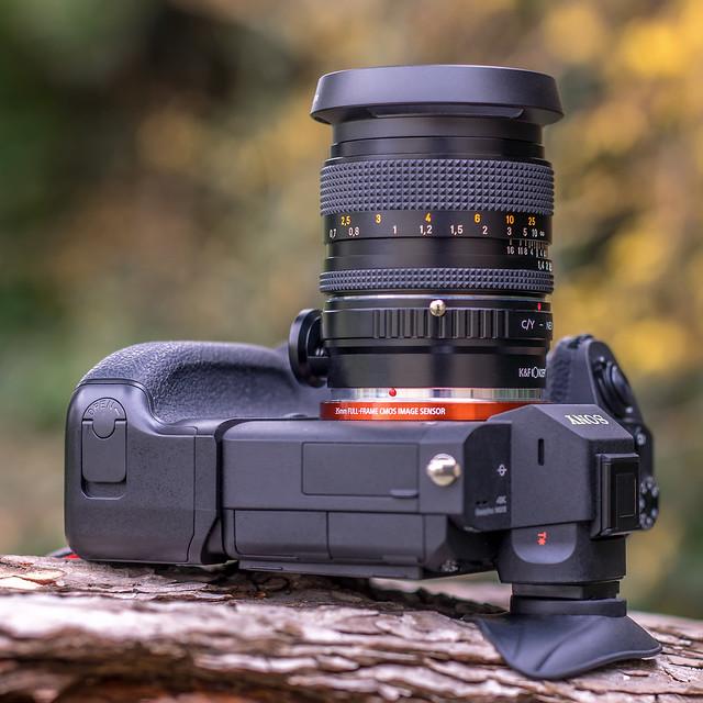 SONY ⍺7III  (ILCE-7M3) & Carl Zeiss Planar 50mm ƒ/1.4 T*