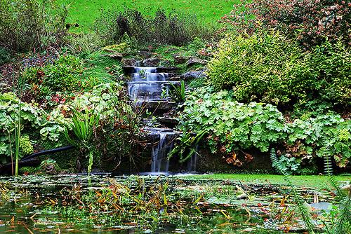 Brundall Gardens underground spring falls   by ian.dinmore