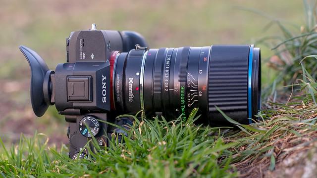 SONY ⍺7III  (ILCE-7M3) & LAOWA 105mm ƒ/2 (T/3.2) B-Dreamer Smooth Trans Focus