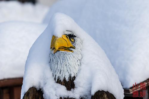 Snowbound   by DragonSpeed