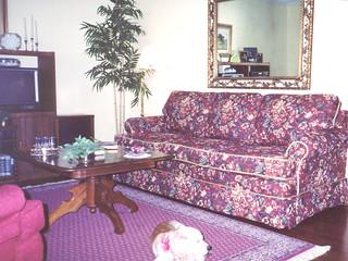 show pics 11-14-2008-251