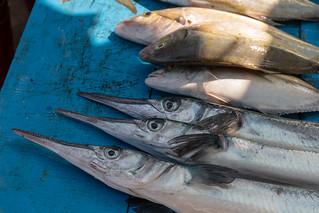 Fischmarkt Negombo | by seghal1