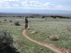 mountain bike trail at Fruita, Colorado
