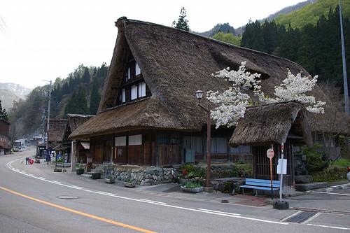 Murakami's house   by tsuda
