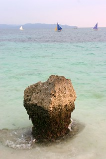 coral reef | by OURAWESOMEPLANET: PHILS #1 FOOD AND TRAVEL BLOG