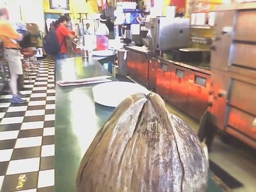 Coconu pizza
