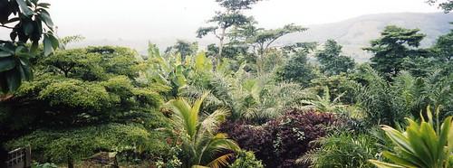 aburi-garden-view
