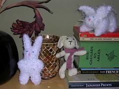 Bunny Family Album