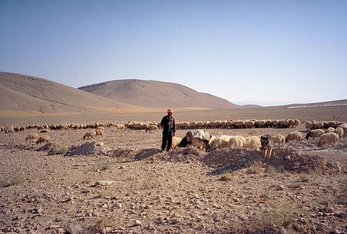 Syria - Deir Mar Musa - 14-13   by Jeff_Werner