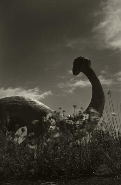 in a ruins -An amusement park-