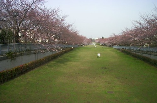 2005040601
