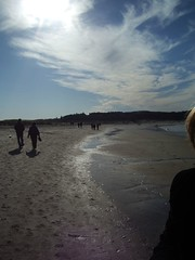 crane's beach
