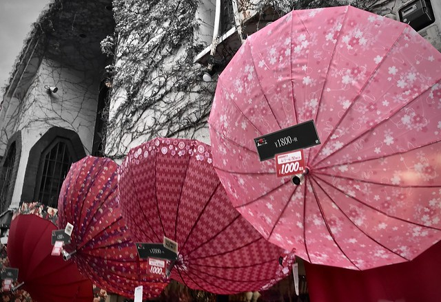 Sakura umbrellas