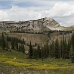 Views heading to Granite Canyon