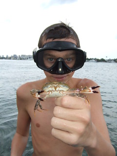 Alex catches a big swimming crab. | by AdventureMIke.com