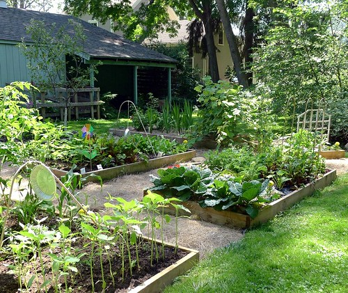 Raised Bed Garden | by Lori L. Stalteri