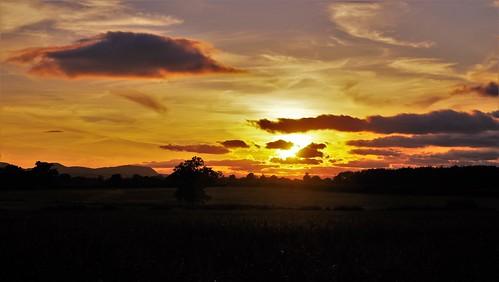 shropshire sunset sun shine clouds sky pentaxart skyscenes tree silhouette fields