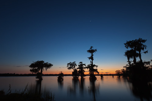 longexposure trees sunset sky lake color tree nature water night clouds canon reflections scott stars landscape island photography dawn star photo louisiana colorful venus martin photos dusk wildlife clear bayou photograph swamp planet planets cypress etsy 2012 waterscape acadiana lakemartin cypressisland mohrman