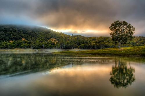 lake tree sunrise landscape dawn hdr lexingtonresevoir absolutelystunningscapes