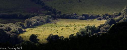 ireland green vignette sunbeam thefield johnbkeane cotipperary bullmccabe silverminesmountains johncoveney