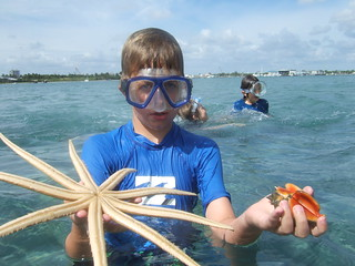 Tripp with conchs and starfish.