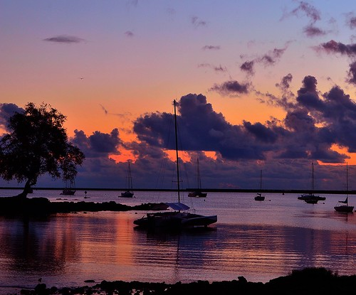 hawaii hilo flickrstruereflection1 rememberthatmomentlevel1 hawaiijune201232