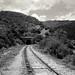 Ese camino pudo ser el ultimo by Francisca Grim