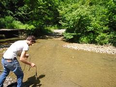 Testing near bridge