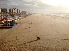 in for the long haul #scheveningen