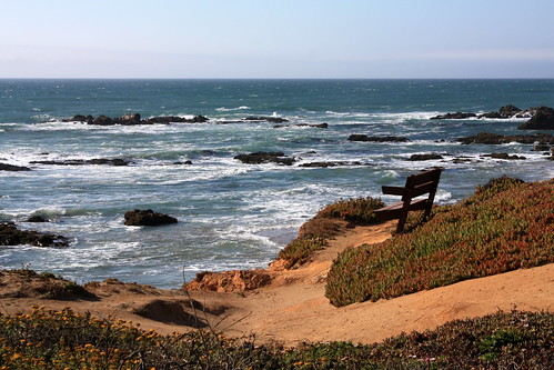 Empty Bench, Pescadero State Beach