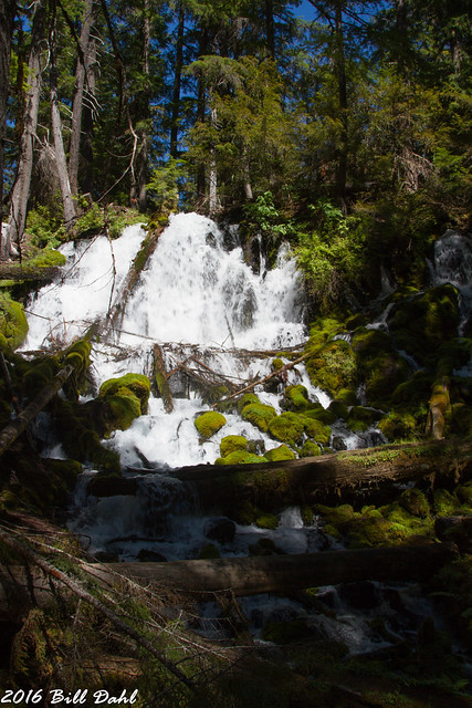 Clearwater Falls 661