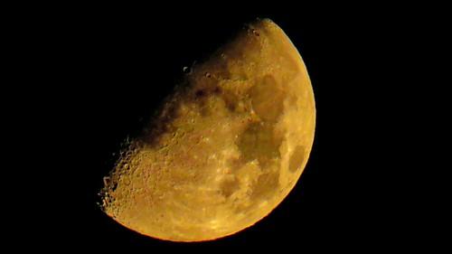 sx60best sx60 germanysx60hscanonpowershotsx60hscanonbridgecamerabridgecameracanonpowershotsx60canonsx60powershotsx60sx60hseagle1effisx60hssxcanonsx60hs handheld canonpowershotsx60hs 16xconverter yellow moon
