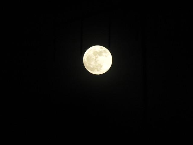 Luna_5maggio2012_Bologna