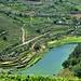 Douro - Caminhos de Santiago - Lamego - Rio Varosa