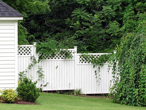 wood trees house brick rural fence landscape virginia woods country lawn scenic courthouse bb bedandbreakfast eventcenter federalstyle buckinghamcounty buckinghamcourthouse maysvillemanor