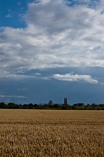Ely Cathedral in the distance | by Shelley & Dave