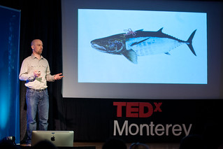 Jason Scorse - Imposter Fish | by TEDxMonterey
