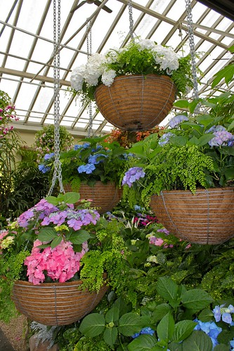 Fitzroy_Gardens_2 | by variationblogr