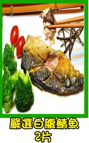 白腹鯖魚-后里租車后里烤肉后里車站后豐鐵馬道