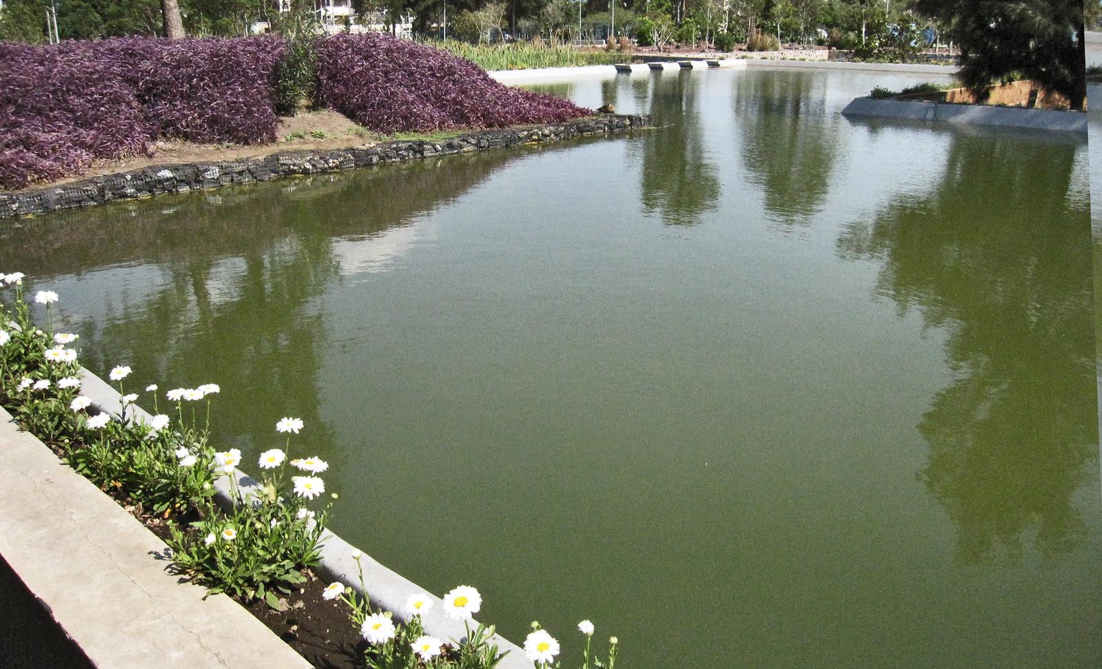 Parque Bicentenario 56