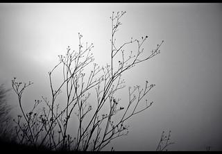 I remember | by Vincepal