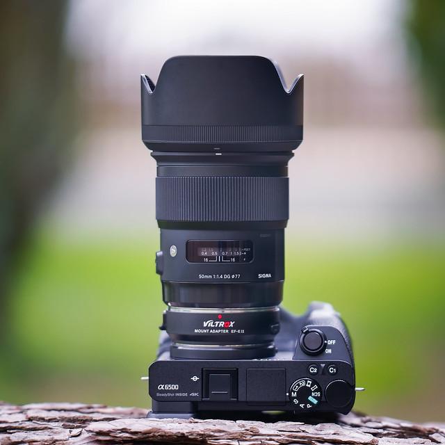 Sigma 50mm ƒ/1.4 DG HSM | Art & Viltrox EF-E II ƒ Booster on SONY ⍺6500 seen by SONY ⍺7III & LAOWA 105mm ƒ/2.0 (T/3.2) B-Dreamer STF